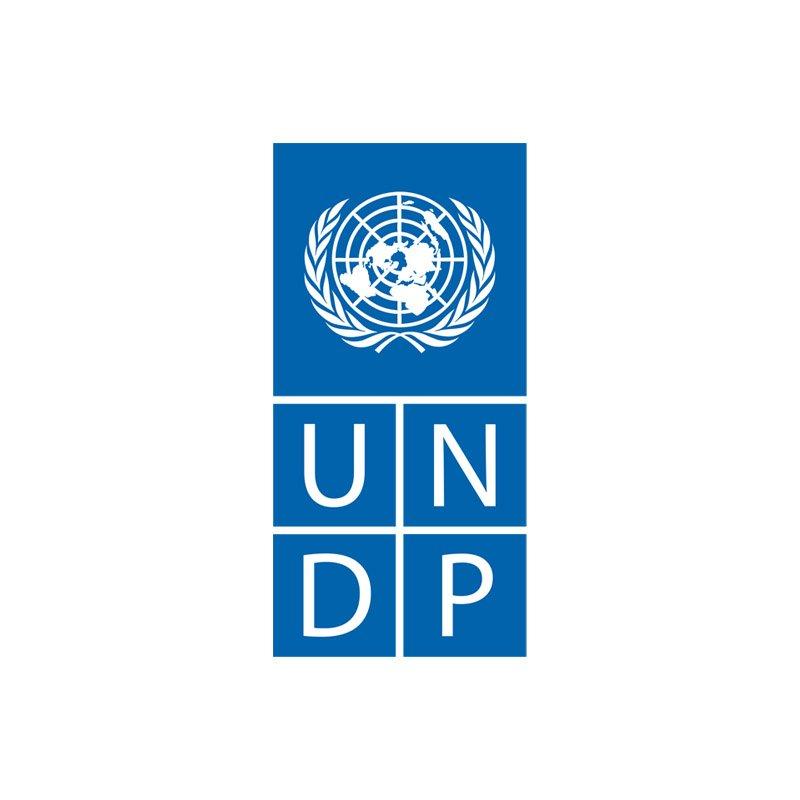 UNDP . Impact Partner